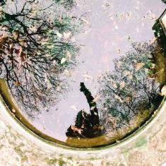 immagine di persona che scatta la foto riflessa in uno stagno
