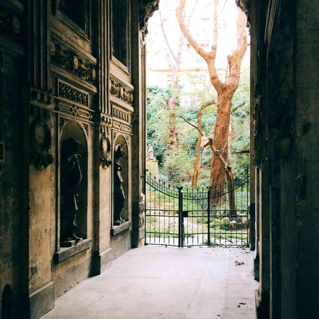 Via Tigor 12 scorcio del giardino abbandonato