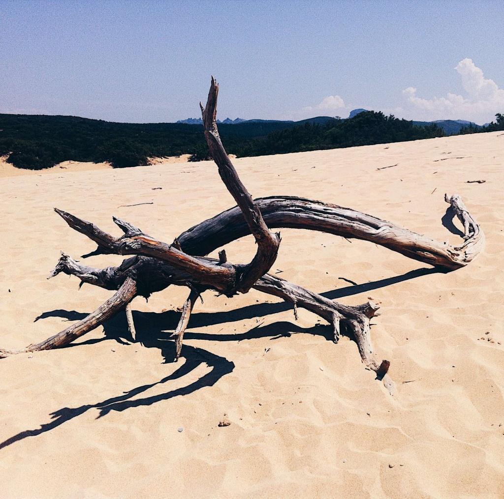 Fotografie al mare: la spiaggia di Piscinas