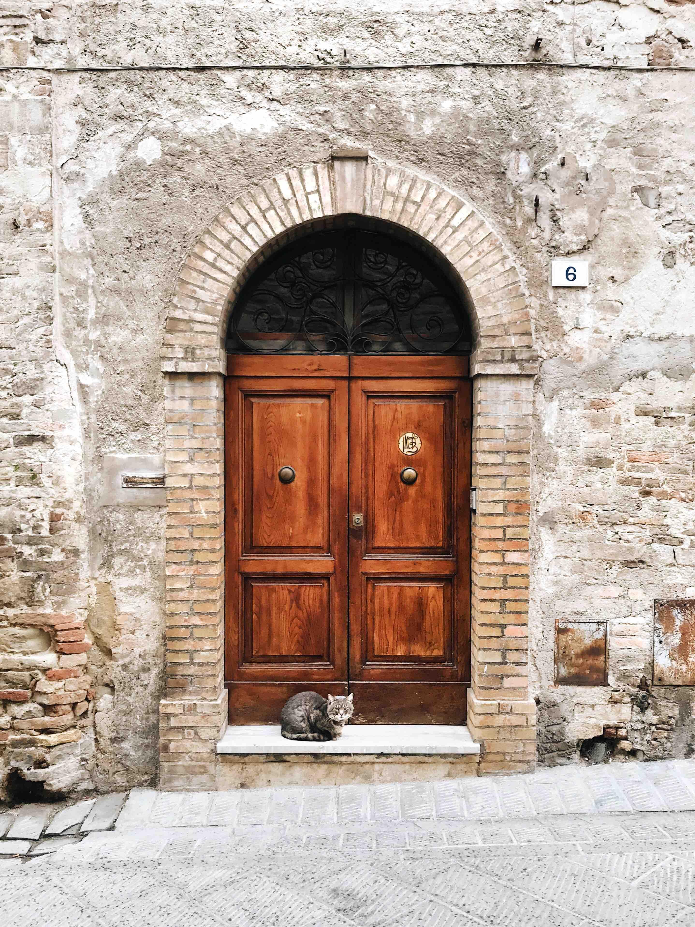 I borghi dell'Umbria: i gatti di Bevagna