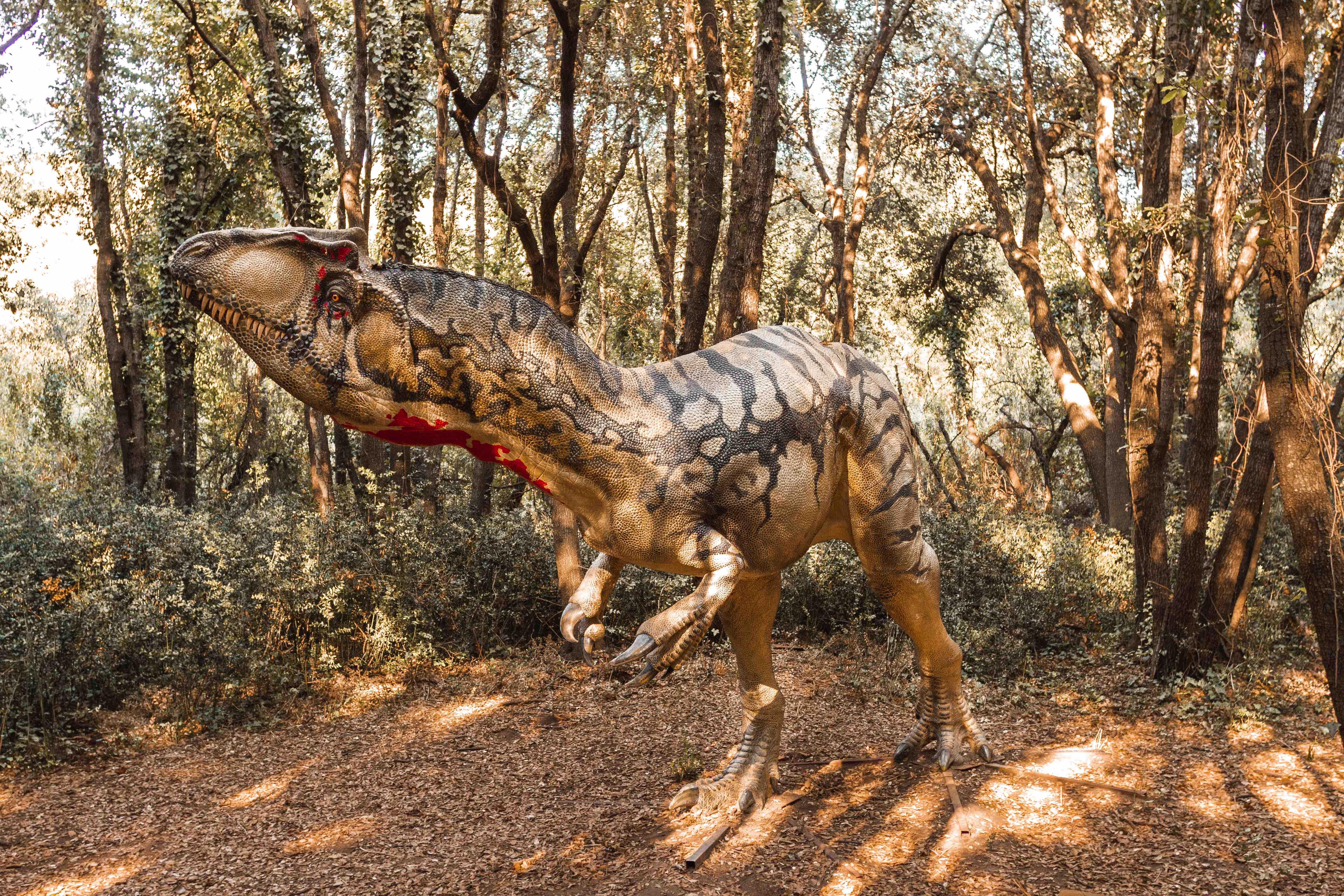 I dinosauri in carne e ossa: mostra itinerante sui dinosauri