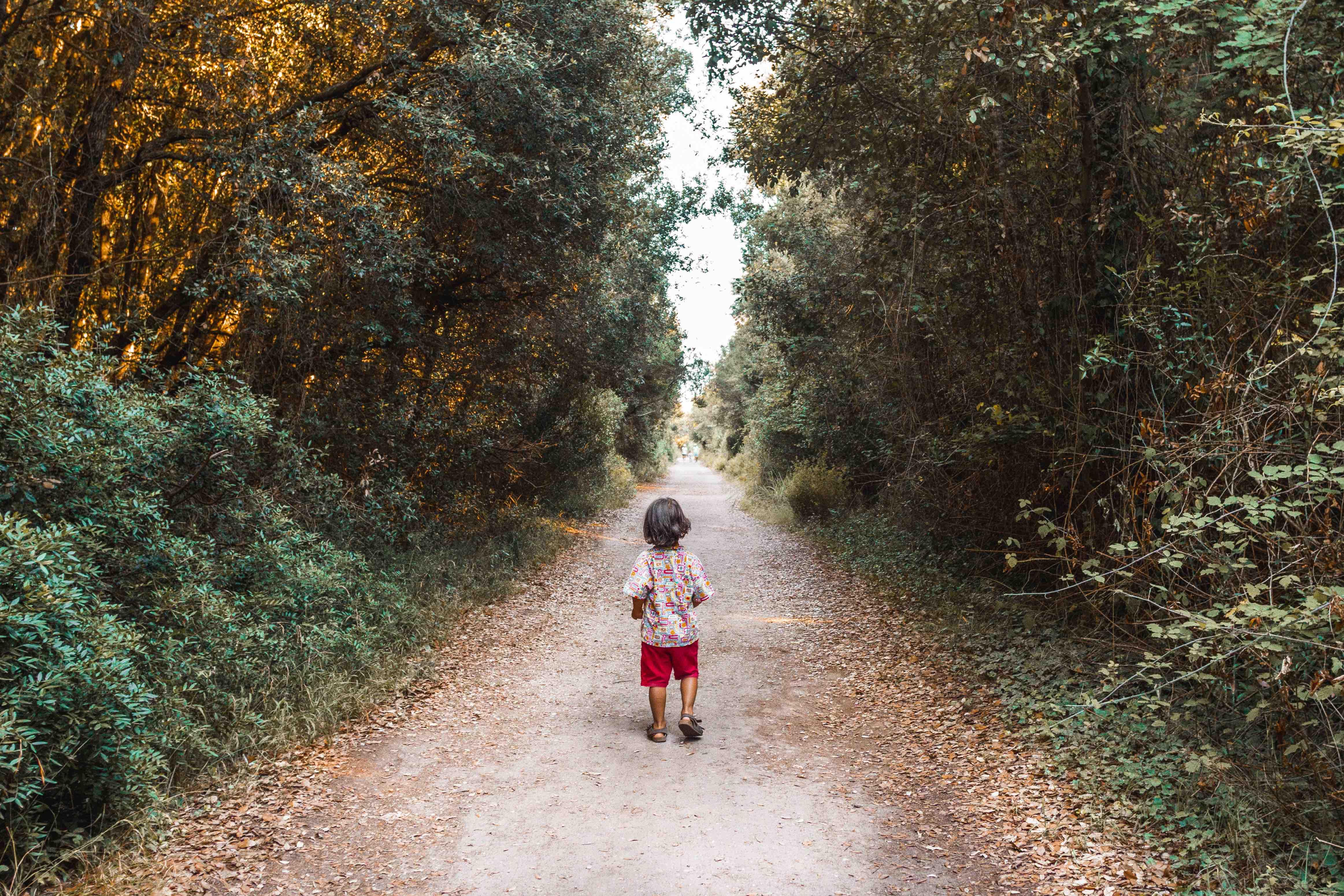 Bambino che cammina in mezzo al bosco