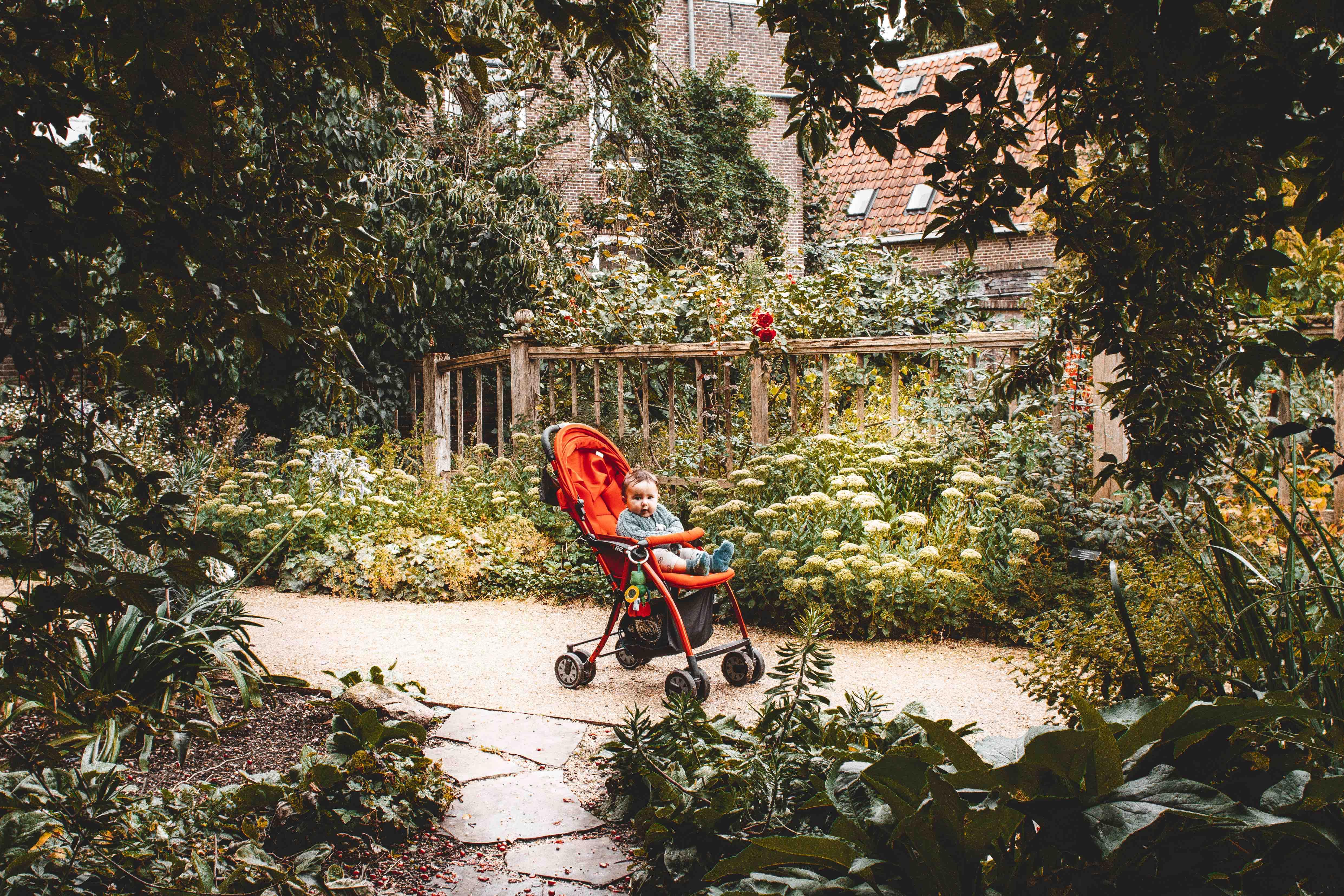 Dall'Italia all'Olanda in macchina: a passaggio nell'orto botanico