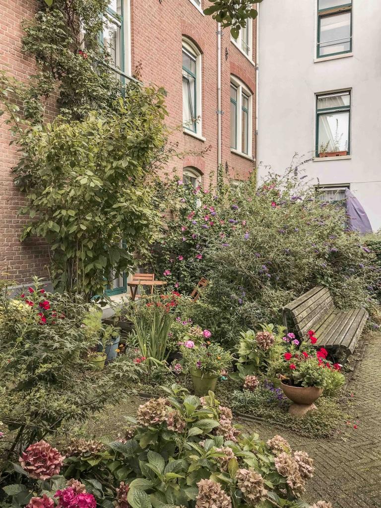 29 cose da vedere ad Amsterdam: un giardino segreto