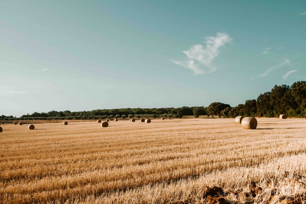paesaggio toscano con campi arati e balle di fieno