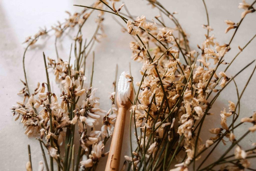Kit da viaggio plastic free: spazzolino in bambù
