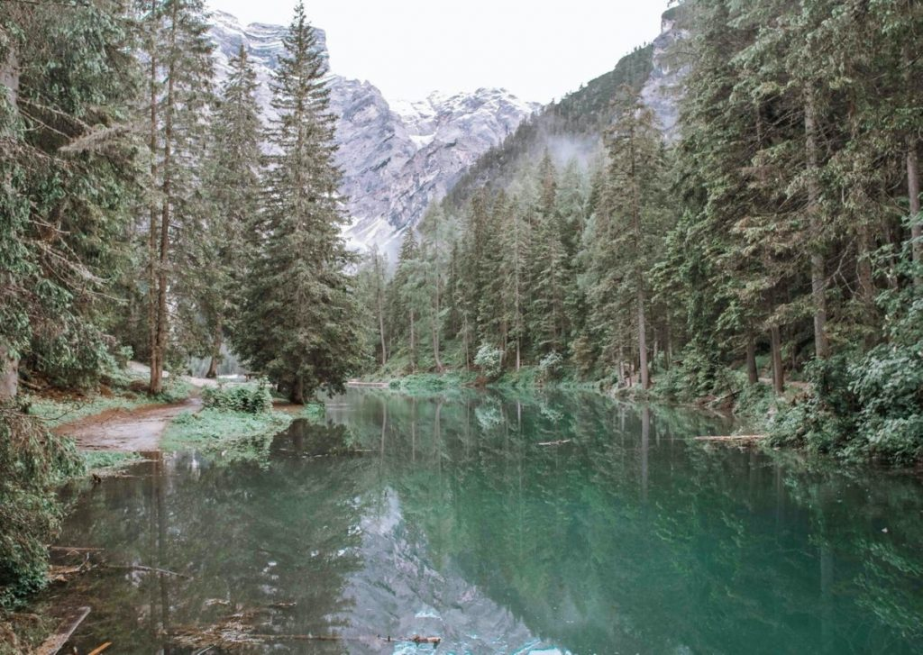 lago di braies con acque color verde e alberi