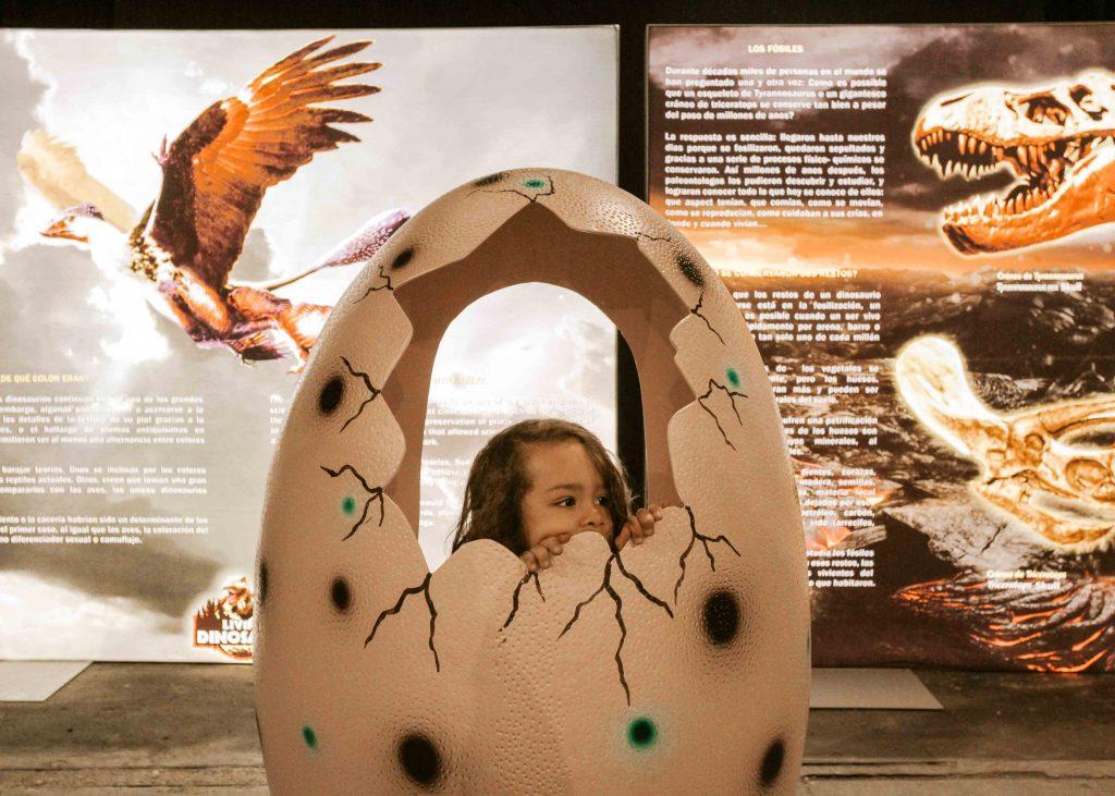 bambino dentro uovo di dinosauro