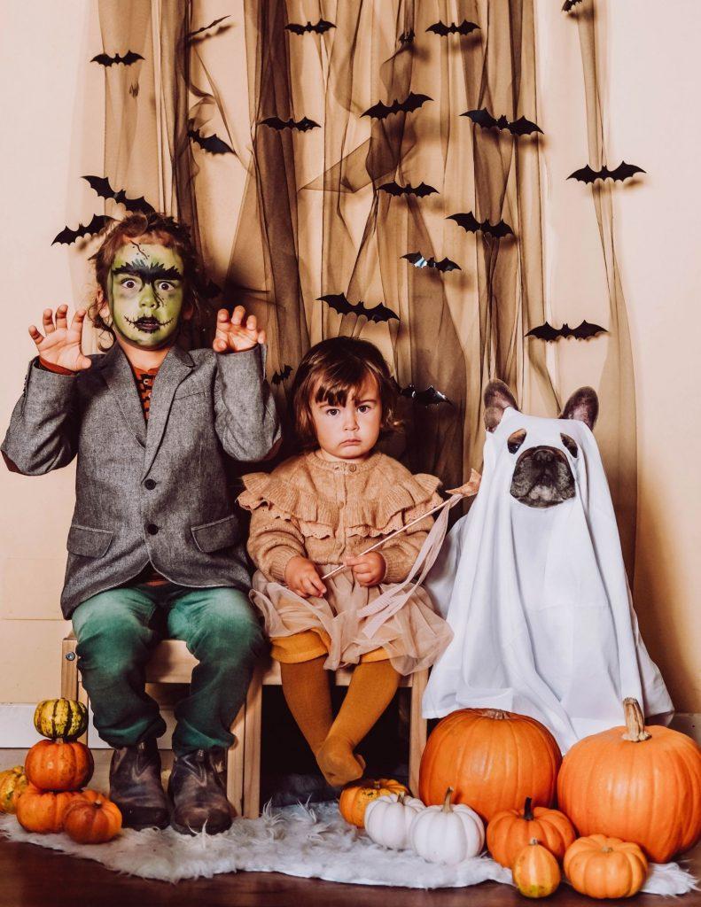 bambini vestiti da halloween ebouledogue francese con vestito da fantasma